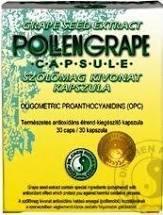 Dr.Chen Pollengrape 330 mg kapszula 60x