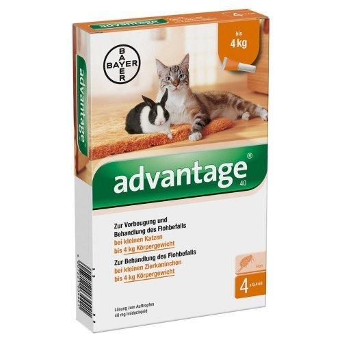 Advantage 40 macska kis 0,4ml a.u.v. 4x