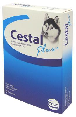 Cestal Plus rágótabletta a.u.v. 2x