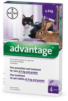 Advantage 80 macska nagy 0,8ml a.u.v. 1x